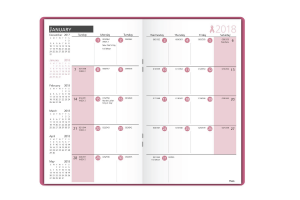 Pink day planner from Mead