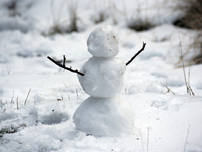 snowman with stick arms